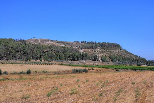 Tel Zekariyya seen from the Valley of Elah, location of the legendary encounter between David and Goliath