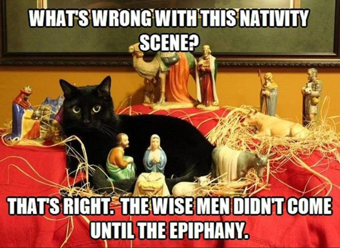 nativity-scene-with-cat