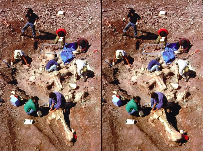 Left: Hoax Giant skeleton photograph; right: The original photograph from a dinosaur dig in Niger, Africa, by the University of Chicago (1993)
